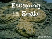 Escaping the Snake